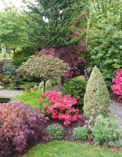 Lansmann: Bepflanzung Kleingarten