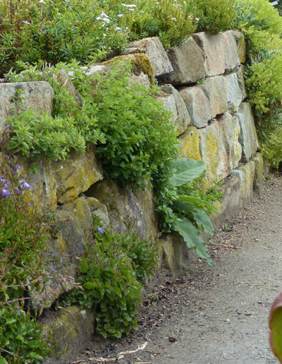 Lansmann: Gartenmauer Sandstein