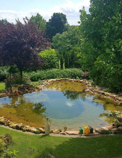 Lansmann: Naturschwimmteich Garten